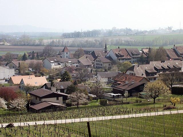 Cornau